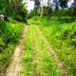 land for sale in ubud LUB071