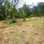 Land for sale in ubud bali - LUB108