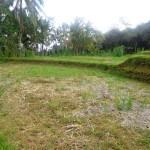 Land for sale in ubud bali - LUB109