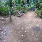 Land for sale in ubud bali - LUB110