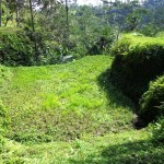Land for sale in ubud bali - LUB114