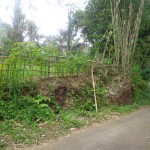 Land for sale in Ubud bali - LUB118
