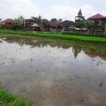 Land for sale in Ubud Bali - LUB123