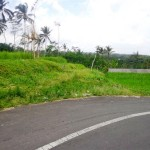 Land for sale in Ubud Bali - LUB128