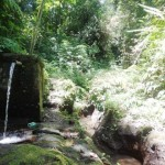 Land for sale in Ubud Bali - LUB131