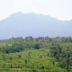 Land for sale in Ubud Bali - LUB132