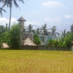Land for sale in Ubud center - LUB150
