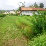 Land for sale in Ubud - LUB152