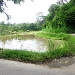 Land for sale in Ubud - LUB189 by Bali Real Property