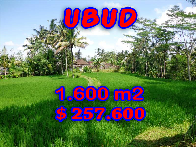 Land-for-sale-in-Ubud