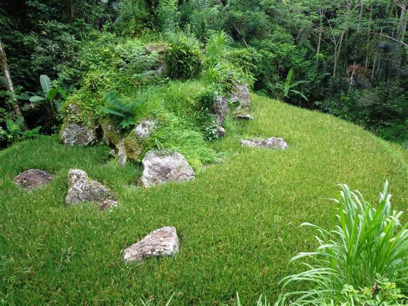 Land for sale in Ubud landLand for sale in Ubud land