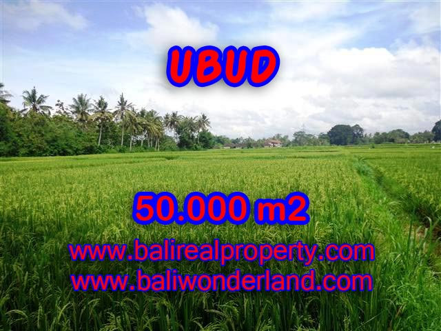 Land for sale in Ubud Bali, Great view in Central Ubud – TJUB351