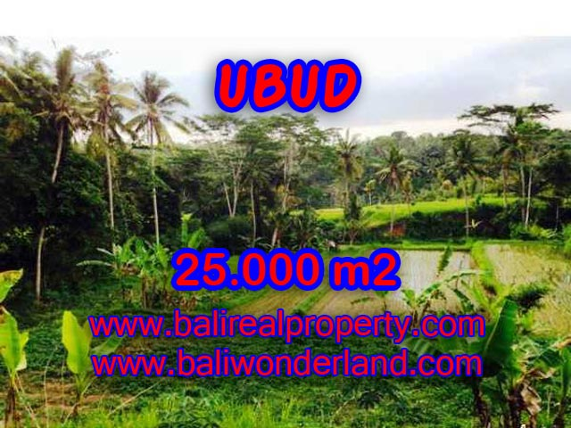Exotic Land for sale in Ubud Bali, rice field, cliff, and Ayung River view in Central Ubud – TJUB350