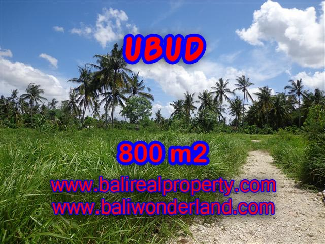 Land for sale in Ubud, Stunning view in Central Ubud Bali – TJUB352