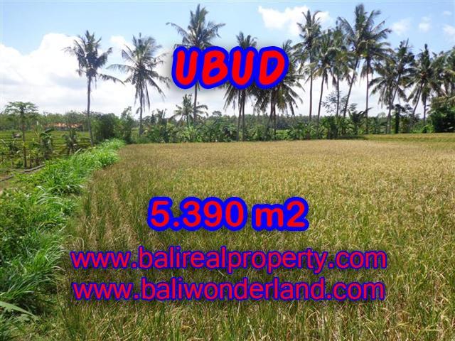 Land for sale in Ubud Bali, Astounding view in Ubud Mas – TJUB342