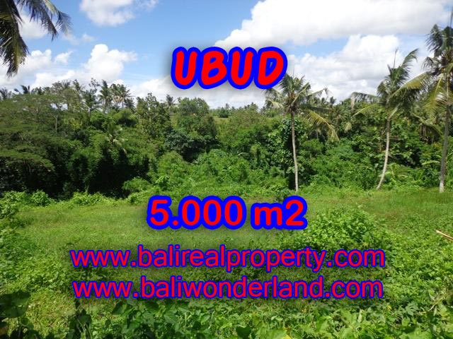 Land in Ubud Bali for sale, Outstanding view in Central Ubud – TJUB353