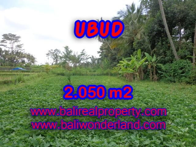 Land in Ubud for sale, Attractive view in Ubud Pejeng Bali – TJUB344