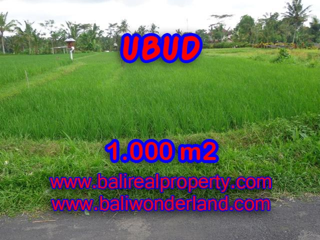 Fantastic Land for sale in Ubud Bali, rice paddy view in Ubud Tampak siring – TJUB345
