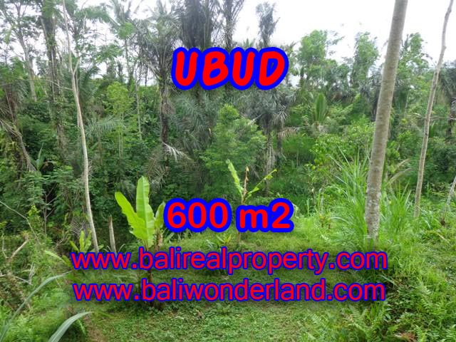 Land for sale in Ubud Bali, Magnificent view in Ubud Tegalalang – TJUB346