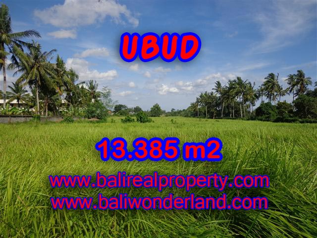 Land for sale in Ubud, Magnificent view in Central Ubud Bali – TJUB357