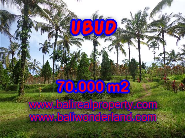 Land in Ubud Bali for sale, Outstanding view in Ubud Payangan – TJUB358