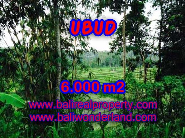 Land in Ubud for sale, Amazing view in Ubud Center Bali – TJUB349