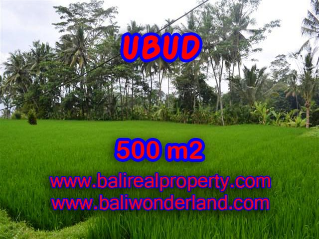 Outstanding Property for sale in Bali, land for sale in Ubud Bali – TJUB364