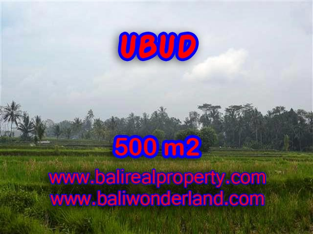 Land in Ubud Bali for sale, Exotic view in Ubud Pejeng – TJUB363