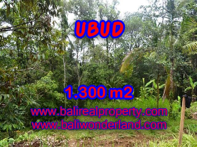 Land for sale in Ubud Bali, Astounding view in Ubud Pejeng – TJUB362