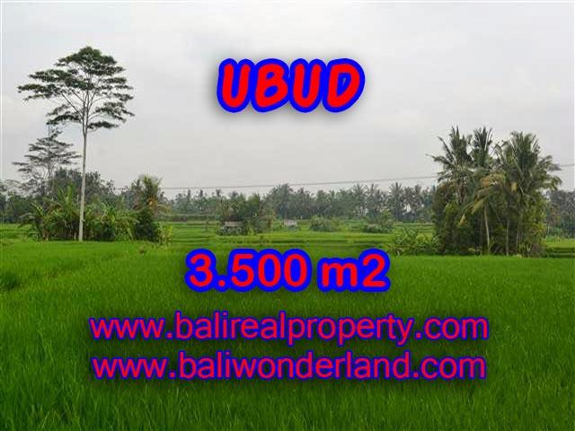 Land for sale in Ubud Bali, Unbelievable view in Ubud Pejeng – TJUB361