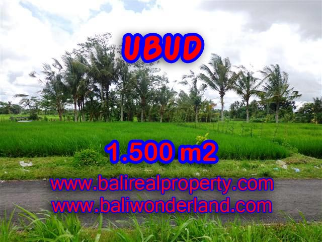 Land for sale in Bali, Fantastic view in Ubud Tampak siring – TJUB369