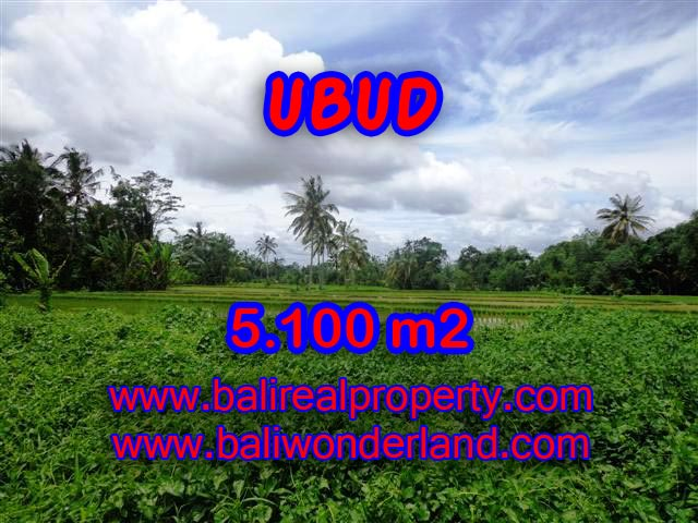 Fantastic Land for sale in Bali, mountain and paddy view on river side in Ubud Tegalalang– TJUB368