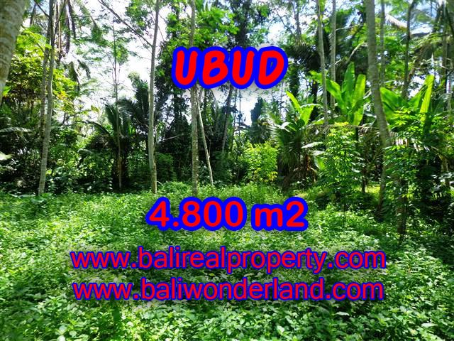 Outstanding Property in Bali for sale, land in Ubud for sale – TJUB382