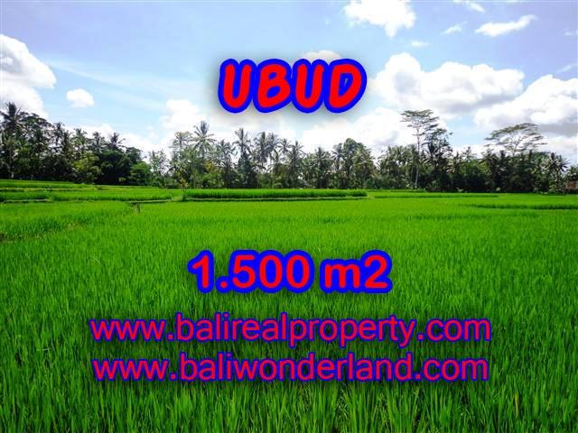 Beautiful Property for sale in Bali, LAND FOR SALE IN UBUD Bali – TJUB383
