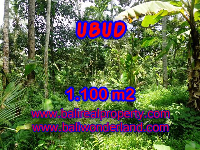 Beautiful Land for sale in Bali, paddy view by the small river in Ubud Bali – TJUB378