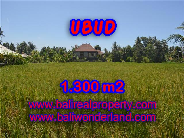 Property in Bali for sale, Astonishing land for sale in Ubud Bali – TJUB386