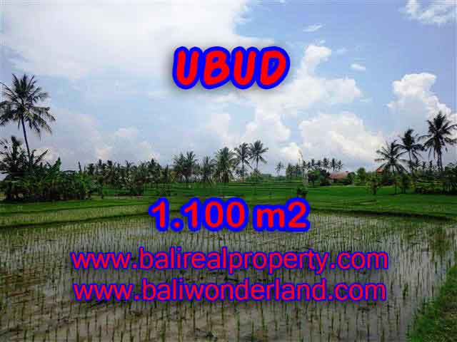 Land in Bali for sale, great view in Ubud Bali – TJUB376
