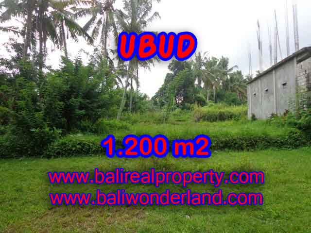 Land for sale in Ubud Bali, Unbelievable view in Ubud Center – TJUB399