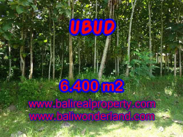 Land in Ubud Bali for sale, Exotic view in Ubud Payangan – TJUB401