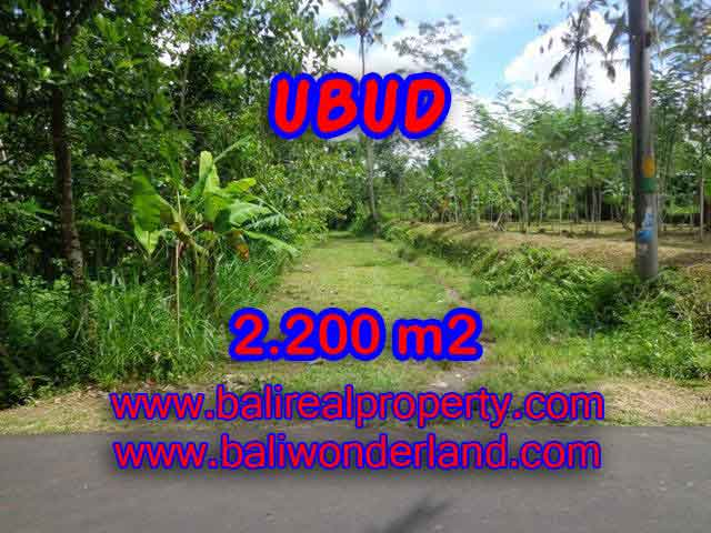 Exotic LAND FOR SALE IN UBUD Bali, Garden view in Ubud Tegalalang– TJUB408
