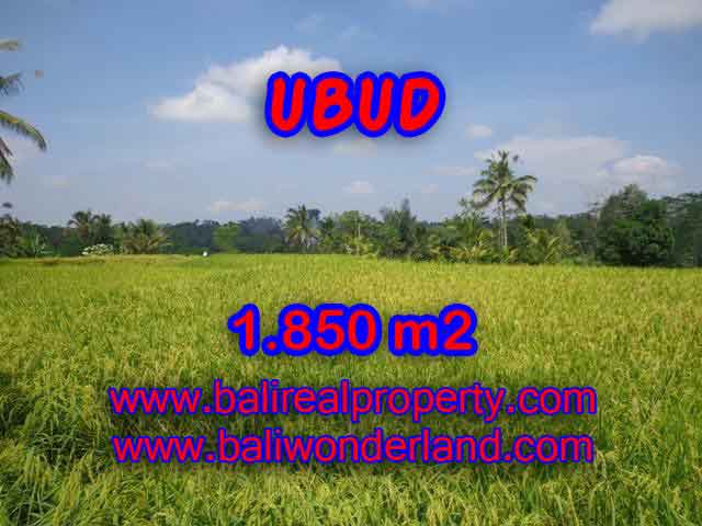 Land for sale in Ubud, Stunning view in Ubud Tegalalang Bali – TJUB410