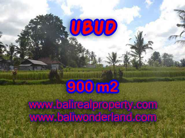Land in Ubud for sale, Stunning view in Ubud Tegalalang Bali – TJUB412