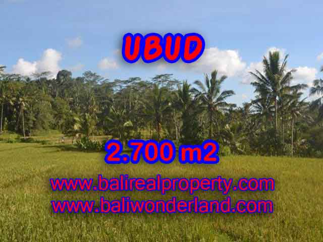 Land for sale in Ubud Bali, Wonderful view in Ubud Payangan – TJUB414