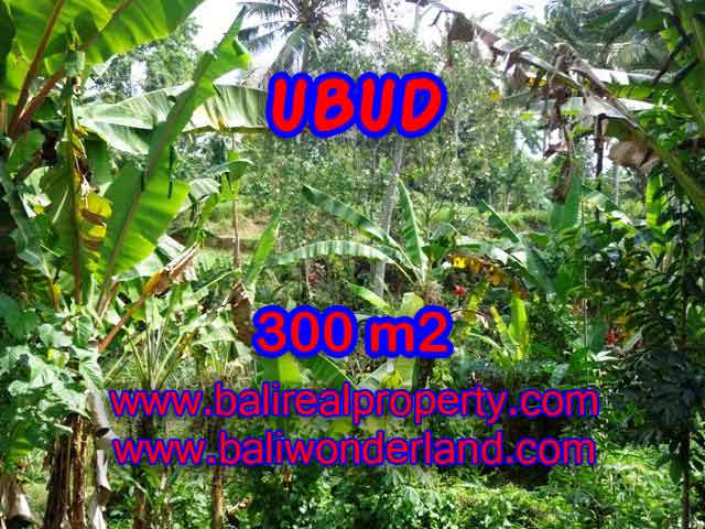 Land for sale in Ubud, Magnificent view in Ubud Center Bali – TJUB415