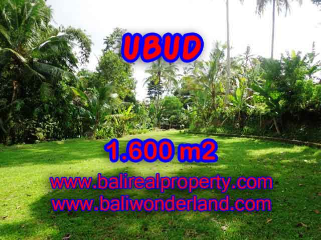 Land in Ubud Bali for sale, Outstanding view in Ubud Center – TJUB416