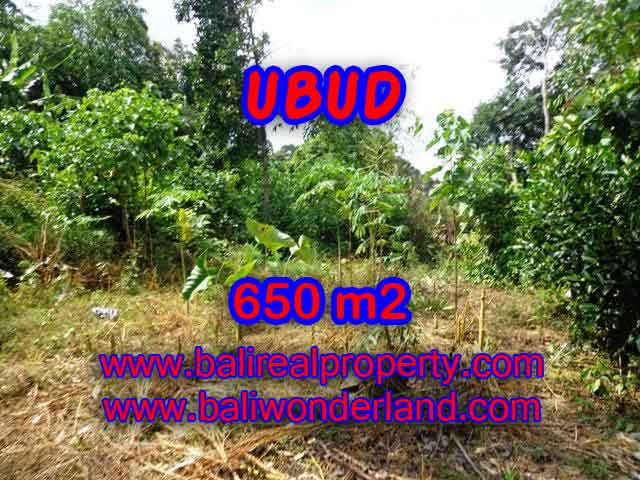 Land in Ubud for sale, Outstanding view in Ubud Center Bali – TJUB417