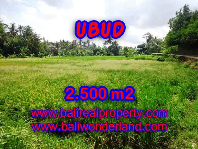 Extraordinary Land for sale in Ubud Bali, Rice Paddy view in Ubud Center – TJUB418