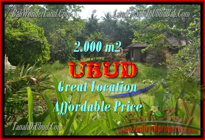 Land for sale in Bali, Fantastic view in Ubud Center – TJUB429