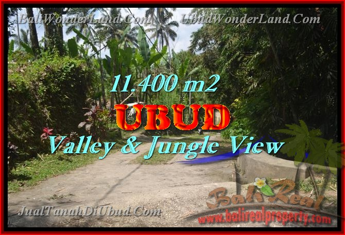 Land in Bali for sale, Stunning view in Ubud Bali – TJUB431