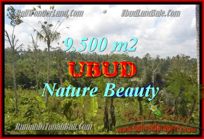 Land for sale in Bali, spectacular view in Ubud Bali – TJUB430